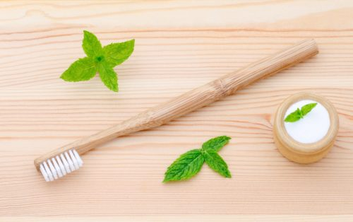 Wood Toothbrush with Natural Mint Toothpaste